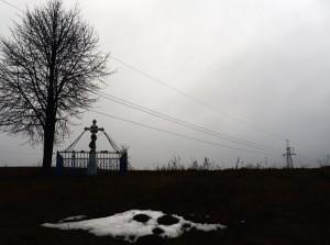 Fot. Jan Witkowski