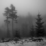 Fot. Marek Pochylski