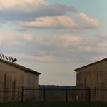 Stawy hodowlane w Topornicy