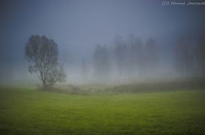 Fot. Hanna Jaroszek