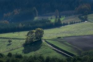 Fot. Hanna Pietrzak