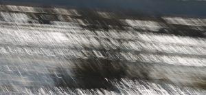 Plener fotograficzny nad Biebrzą